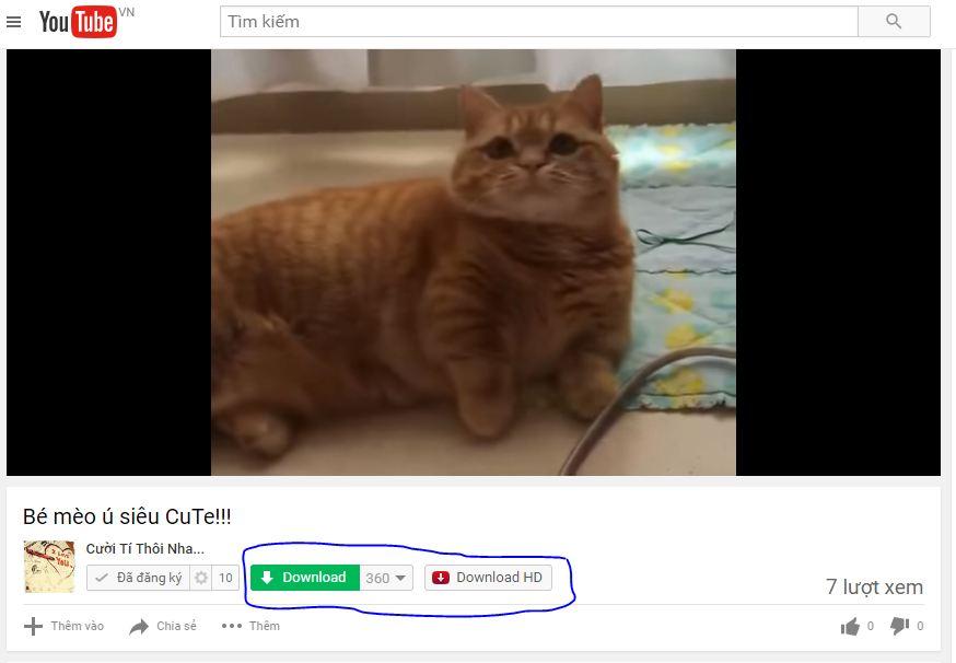 Một số cách download hay trên Youtube 2016-6