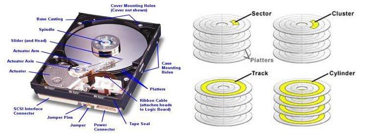 O Cung HDD (Hard Disk Drive)